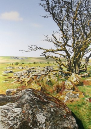 Tree & Granite, Bodmin Moor