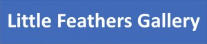 Little Feathers Gallery Facebook logo